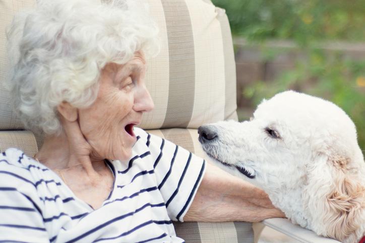 Alzheimer's Behaviors